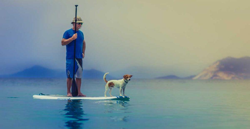 surf pour tous